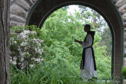 La vida monástica, camino de libertad