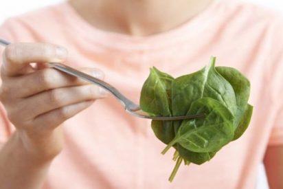 ¿Sabes que la luz es clave para unos vegetales de interior con más nutrientes y sabor?