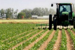 La agricultura apareció en varias culturas gracias a la bonanza