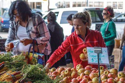 Hacia sistemas alimentarios justos, resilientes y sostenibles