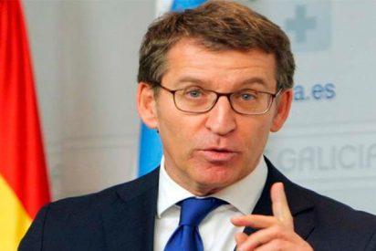 Alberto Núñez Feijóo aumenta la mayoría absoluta del PP en Galicia a 42 escaños con el voto emigrante