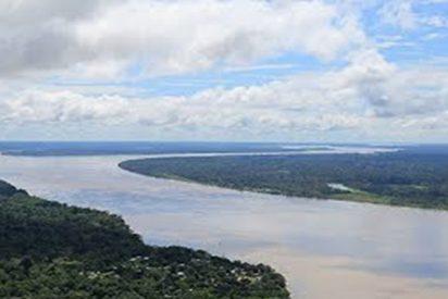 Estas son las empresas que dañan irreparablemente el pulmón del planeta, la Amazonía