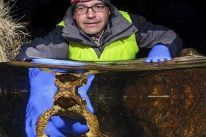 ¿Sabes cómo influye el cambio climático en las poblaciones madrileñas de anfibios?