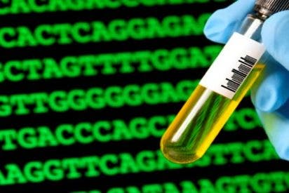 ¿Sabes cuáles son los peores riesgos de la biología sintética para la Humanidad?