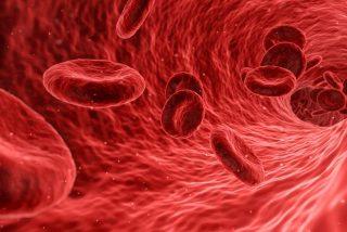 Longevidad: El primer análisis de sangre que detecta el cáncer