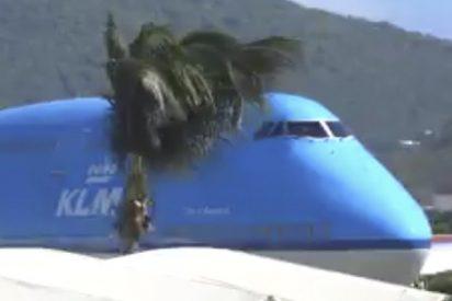 ¡O sobra avión o falta aeropuerto!: Así se ve un Boeing 747 en este pequeño aeropuerto