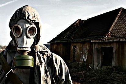 La sorprendente proliferación de plantas adaptadas a la radicación en Chernóbil