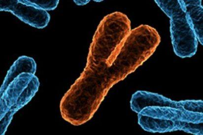 ¿Sabías que el 47% de patentes genéticas marinas, están en manos de una sola empresa?