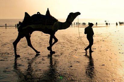 ¡Insólito!: Se inunda parte del desierto de Arabia tras el paso de un ciclón
