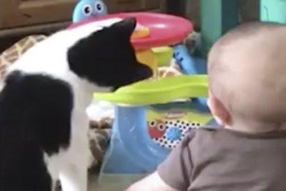 Bebés y sus adorables mascotas