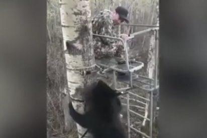 Este tipo se salva porque el oso se lo piensa mejor...