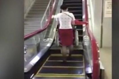 Nunca has visto una escalera mecánica tan bien adaptada como esta...