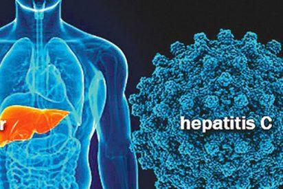 Nuevos avances en el estudio del virus de la hepatitis C podrían ayudar a mejorar los tratamientos