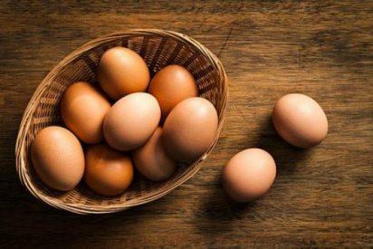 Chiste: el del niño de los huevos y el cura cabreado