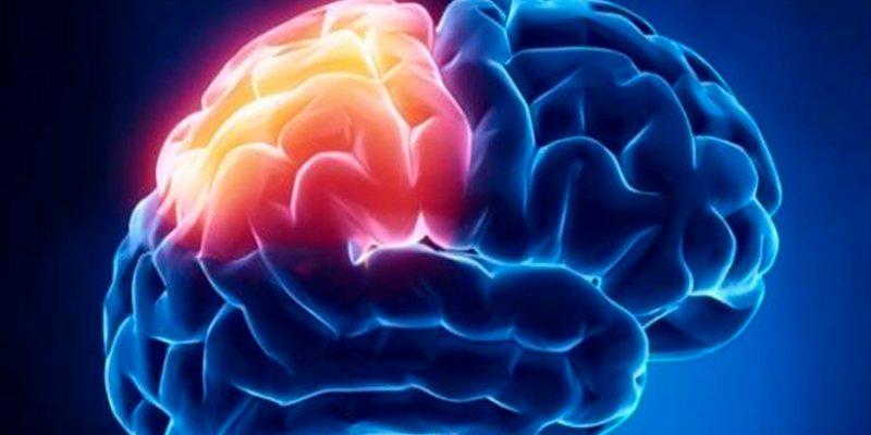 ¿Sabes por qué es tan importante la prevención cerebro-cardiovascular en el envejecimiento?
