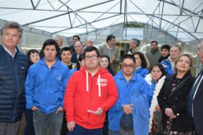La diócesis de Concepción crea un invernadero que dará trabajo a jóvenes con síndrome de Down