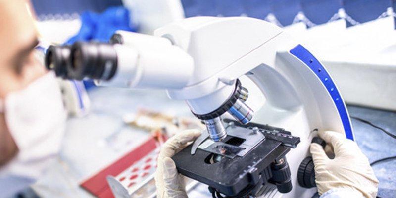 Reclaman más inversión en la investigación para los afectados por el Síndrome de Duplicación MECP2
