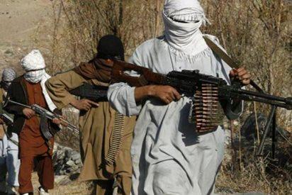 Descubren que los islamistas jóvenes radicalizados no suelen mostrar patrones específicos de enfermedad mental