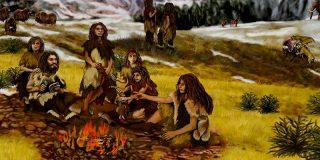 Cocinar y comer carne nos hizo humanos