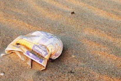 ¿Sabes por qué las playas de Australia se han cubierto de pañales?