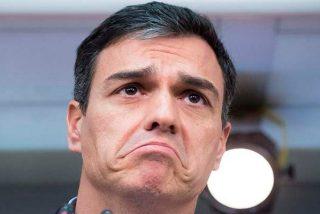 El vídeo de 13 segundos que deja a Pedro Sánchez como un sinvergüenza y hunde al PSOE