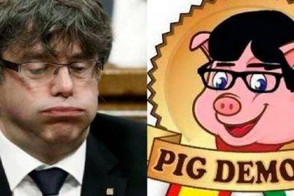 España: No hay libertad de expresión para la empresa de jamones 'Pig Demont'