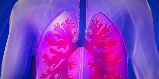 Así es el 'spin-off' para crear un fármaco que elimine las células madre tumorales