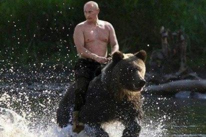 ¿Sabes por qué a Rusia se le estereotipa con los osos?