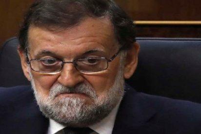 Rajoy sería millonario si en vez de meterse en política hubiese seguido como registrador