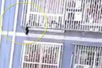 Un hombre trepa por un edificio y salva la vida de este bebé que quedó colgado de unas rejas