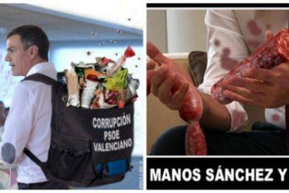 Twitter se mofa de 'posturitas' Sánchez y le ridiculiza con el escándalo de corrupción en Valencia