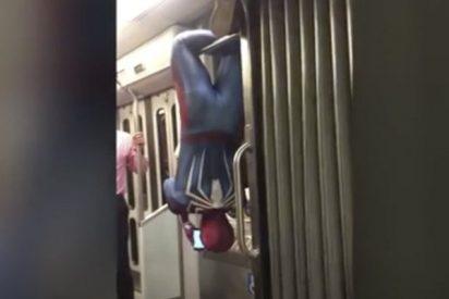 El Spiderman del metro que lo peta en las redes