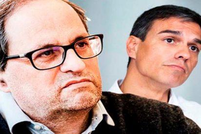 El fanatico Quim Torra responde con 10 provocaciones a las 10 concesiones del pardillo Pedro Sánchez