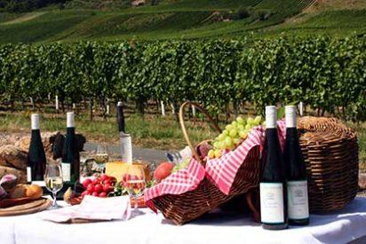 Siete destinos imprescindibles para los amantes del buen vino