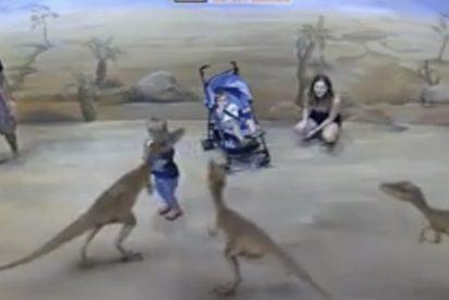 Zoos modernos: Todo el mundo flipa con esta realidad virtual de un parque de atracciones