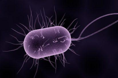 Bacterias mutan en el espacio y vuelven a la Tierra mucho más agresivas