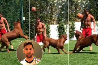 Messi vuelve loco a su perro 'Hulk', jugando al fútbol en el jardín de su casa