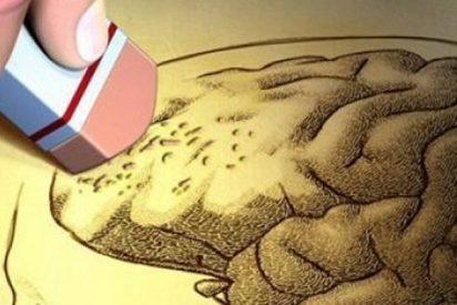 Longevidad: Los científicos identifican el origen del Alzheimer