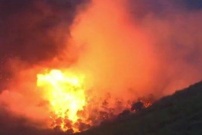 Más de 20 muertos en Grecia por una ola de incendios forestales que arrasa decenas de hogares