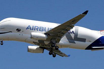 Airbus muestra el primer vuelo del nuevo avión carguero Beluga XL
