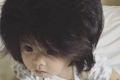 Este bebé consigue 100.000 seguidores en Instagram gracias a su melena