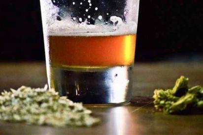 Científicos canadienses crean una cerveza que no se hace con cebada sino con marihuana