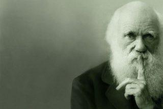 Un descubrimiento científico da la razón a Charles Darwin y avala su teoría sobre el vuelo de los insectos