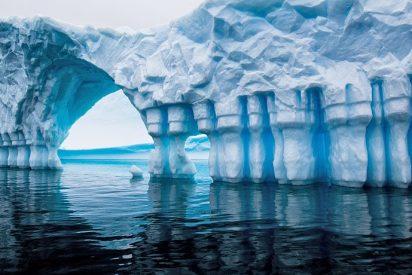 Algas alcanzan la Antártida tras recorrer 20.000 kilómetros