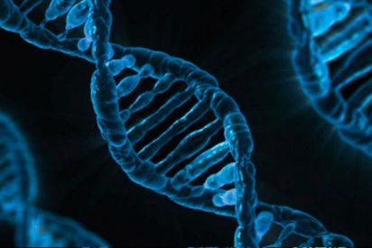 ¿Por qué aún no se usa la edición genética para curar enfermedades?