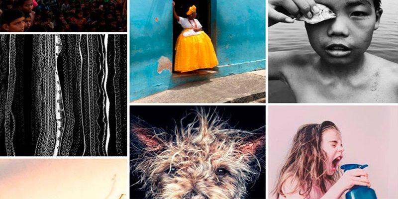Estas son las mejores fotografías tomadas con un iPhone