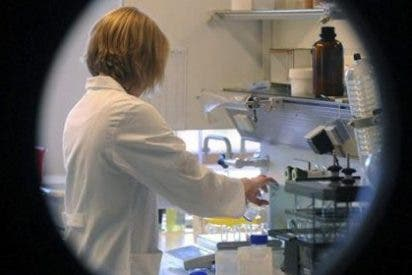 Descubren 288 proteínas en el esperma humano, claves para la formación del cigoto y del embrión