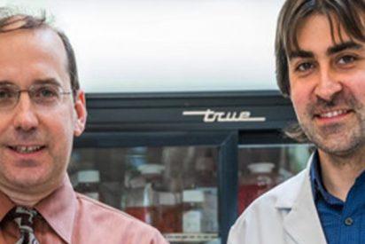 El científico que interroga a cada cáncer hasta saber cómo matarlo