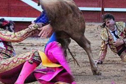 Un toro arranca el cuero cabelludo al maestro Juan José Padilla