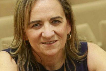 María José Alonso recibe el premio 'Founders Award' de la Controlled Release Society